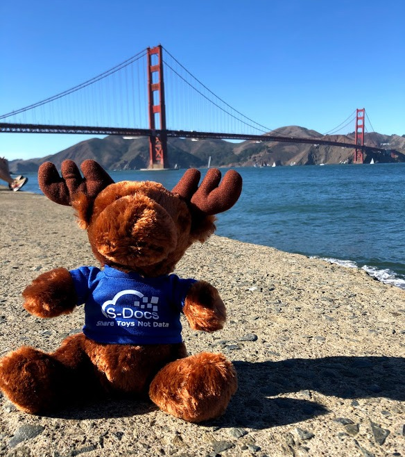 Max the Moose - Golden Gate Bridge Water-1